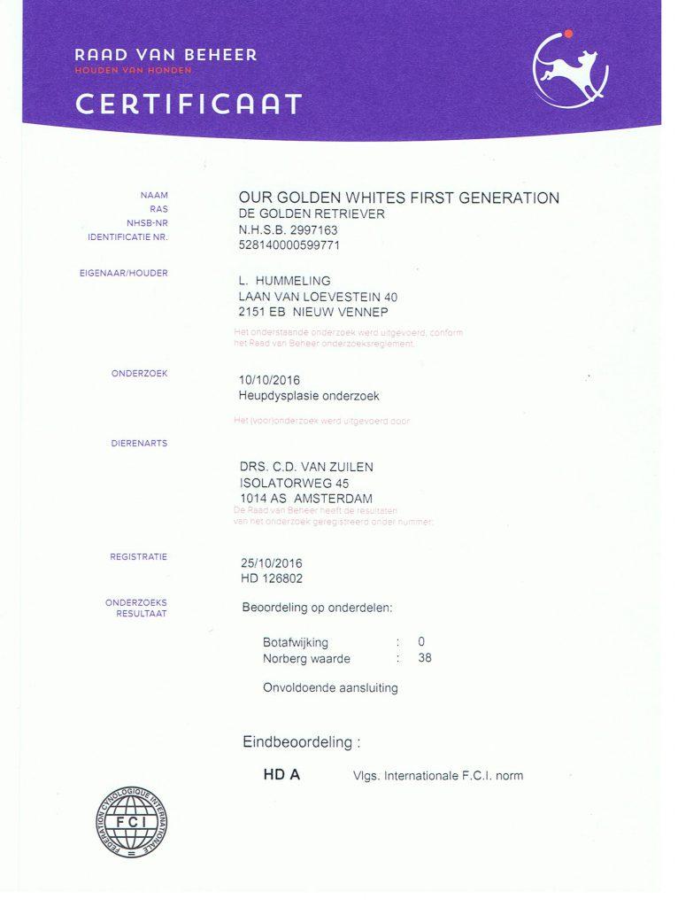 HD Certificaat Aika