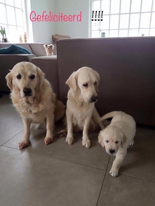 De drie generaties!